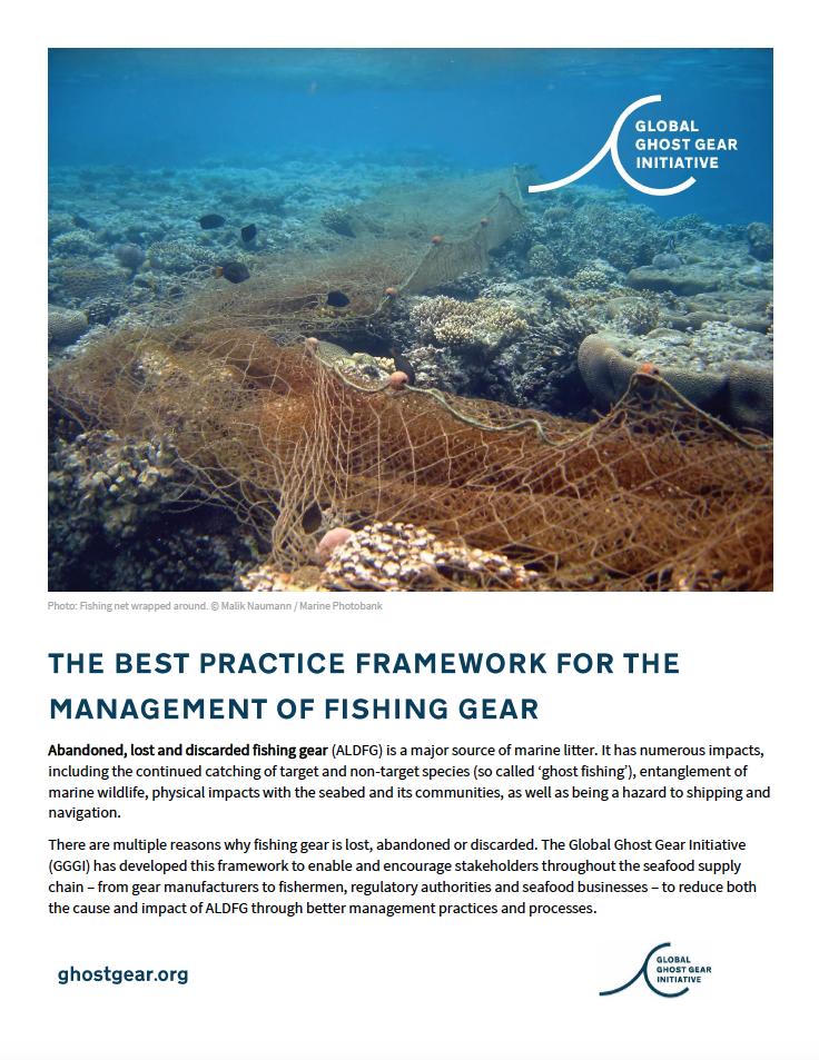 Best Practice Framework Overview