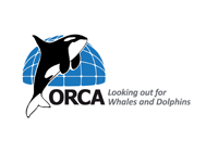 orca-no-background.png