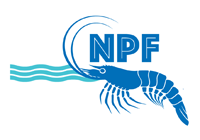 npf_no-background PNG.png