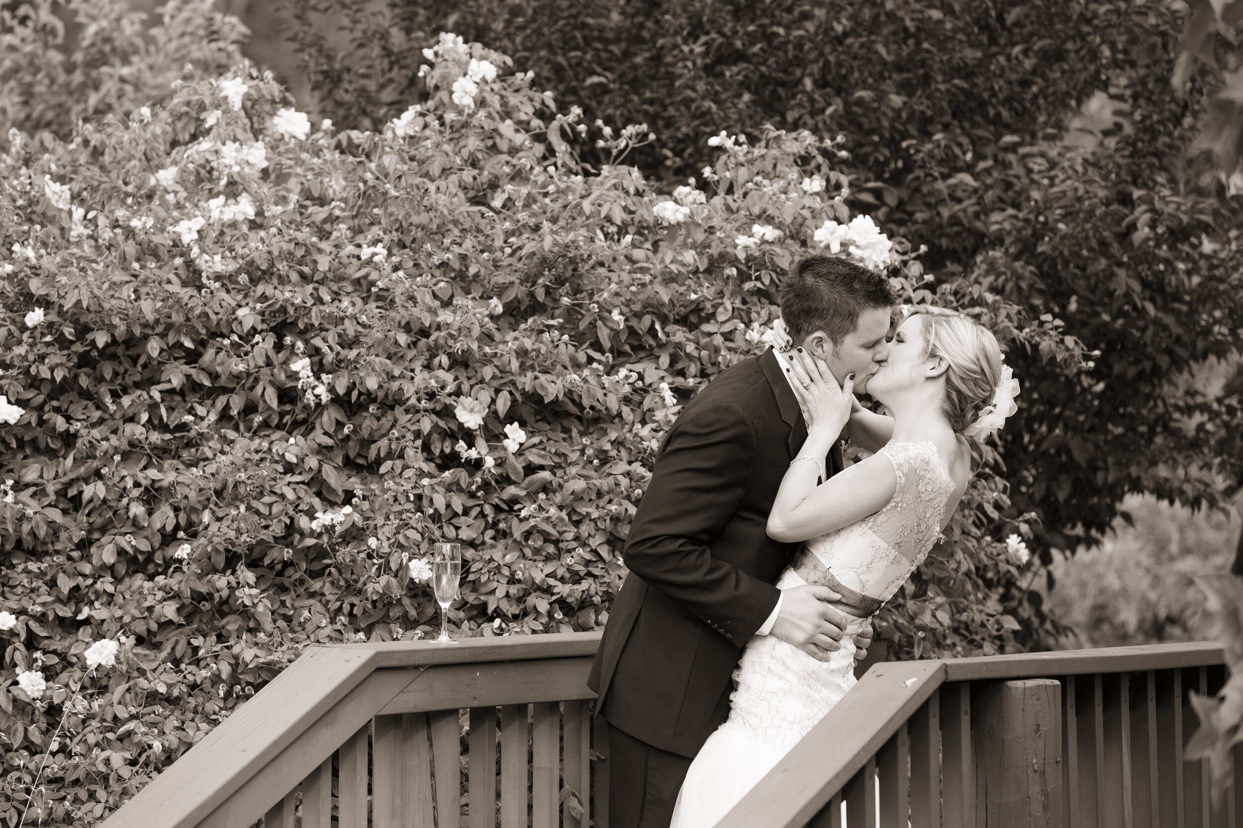 """BROOKE & RYAN - """"Your professionalism, attention to detail, passion for what you do and all round love shines through."""""""