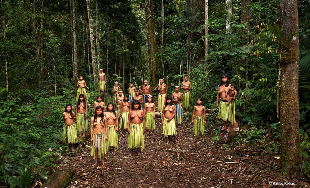 History & Scienceof Kambo -