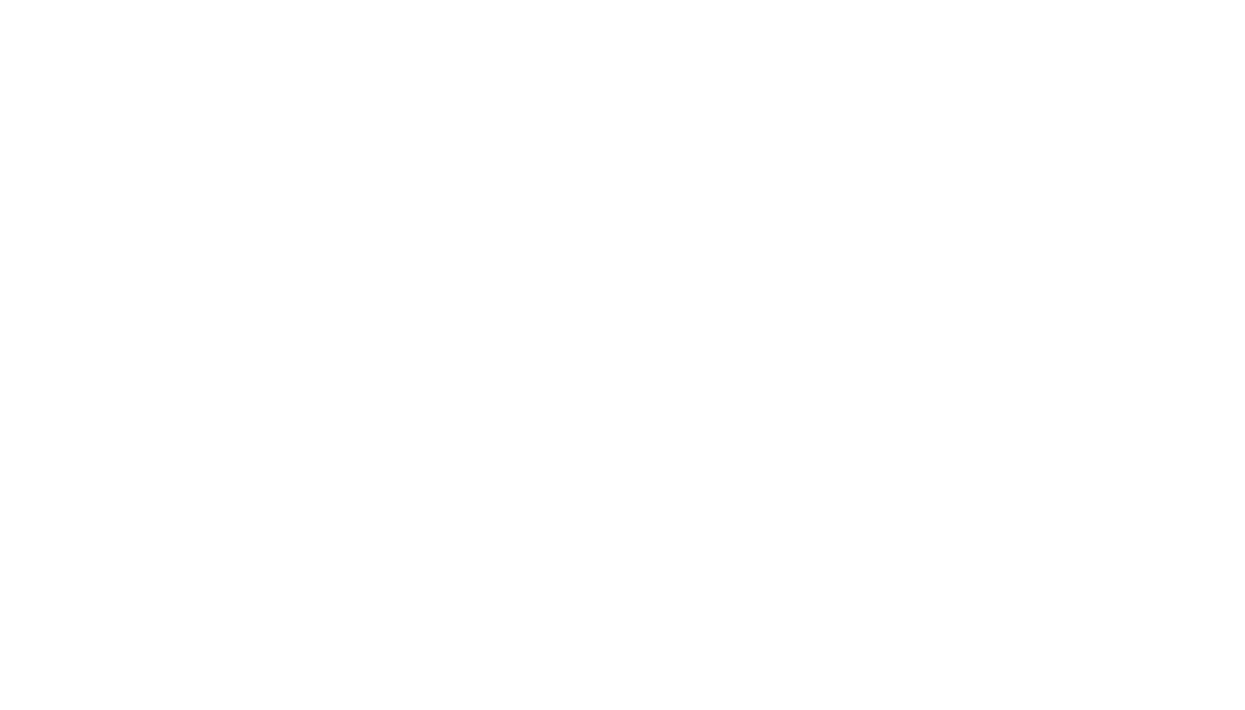 Wild Pizza Co.-logo-white (1).png