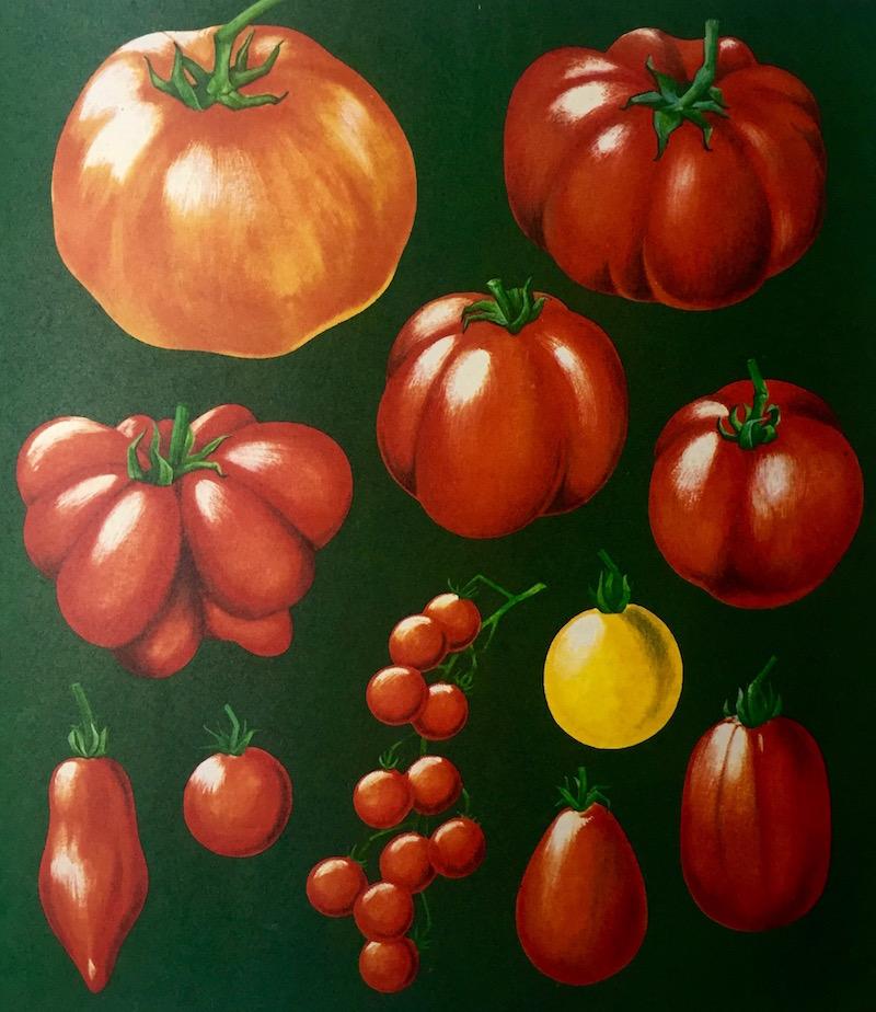 vollwerttisch_manifest_tomate.jpg