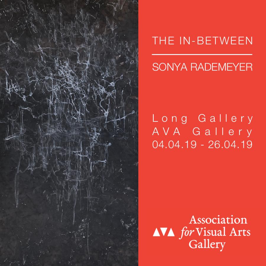 Sonya Rademeyer exhibition