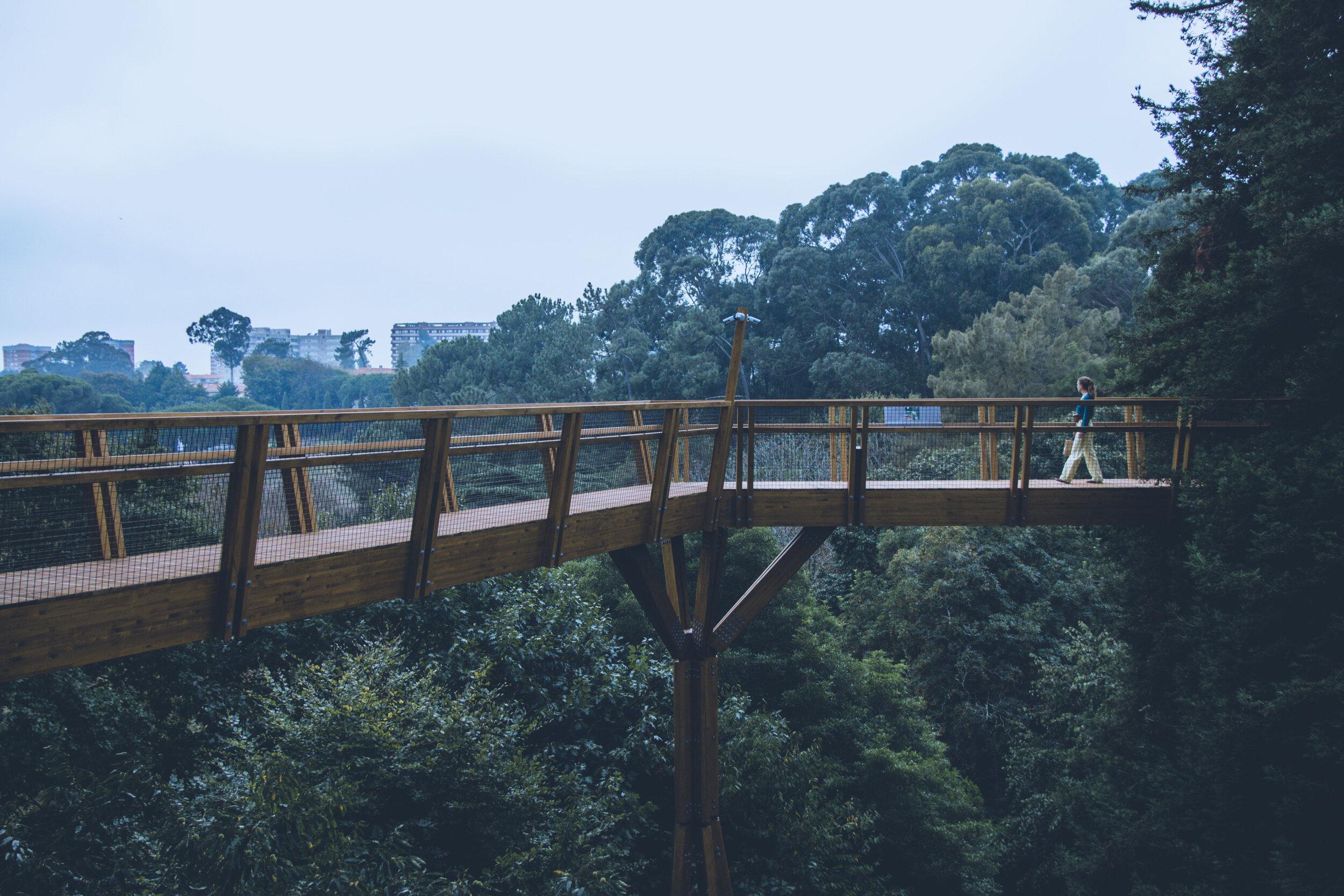 Serralves Treetop - Arch. Carlos Castanheira & Clara Bastai, Porto