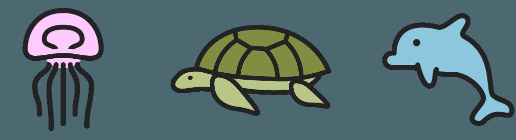 jellyfish, turtle, dolphin