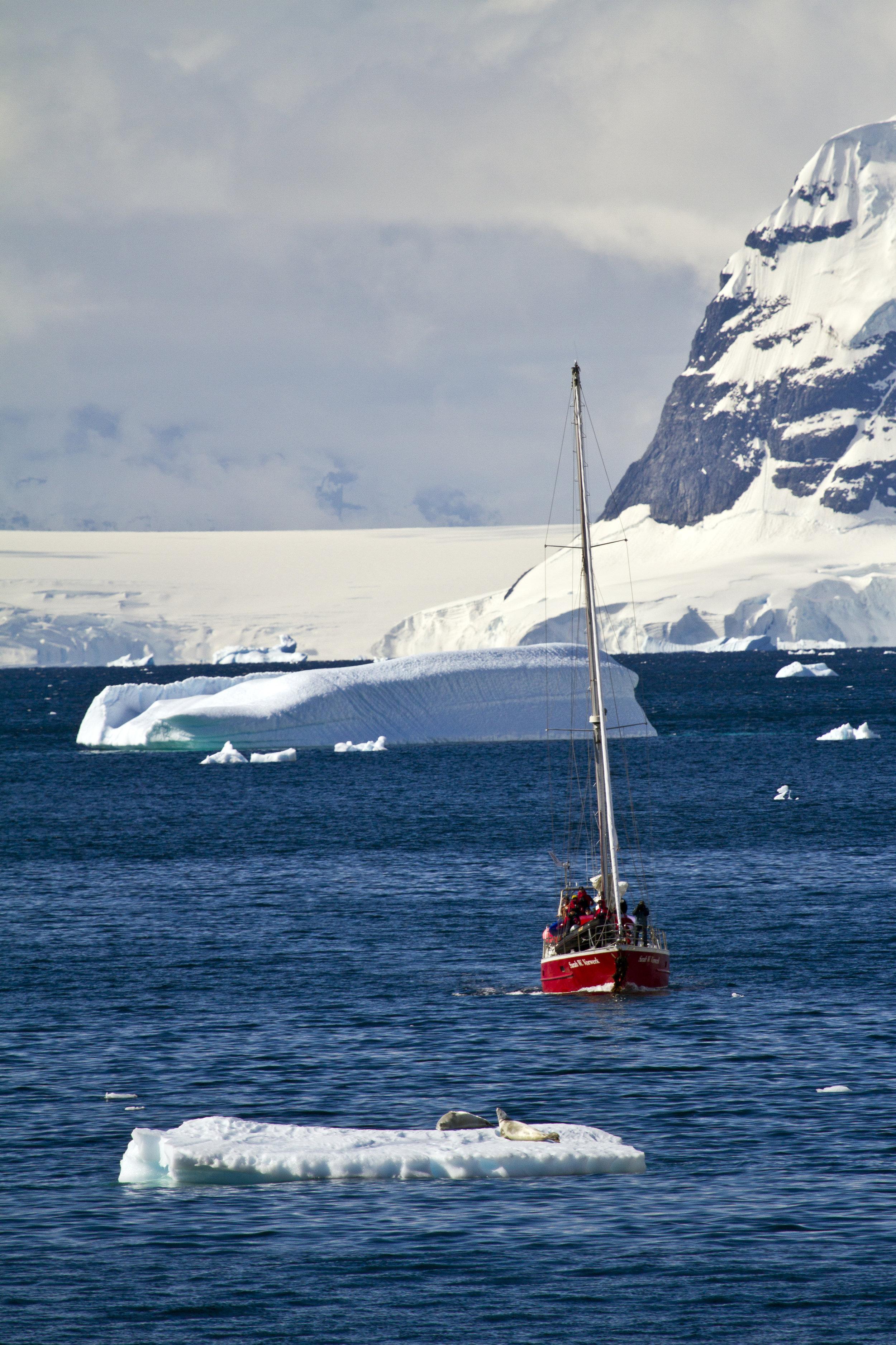 cold sailing large.jpg