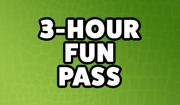 Group Buttons - 3 Hr Fun Pass.jpg