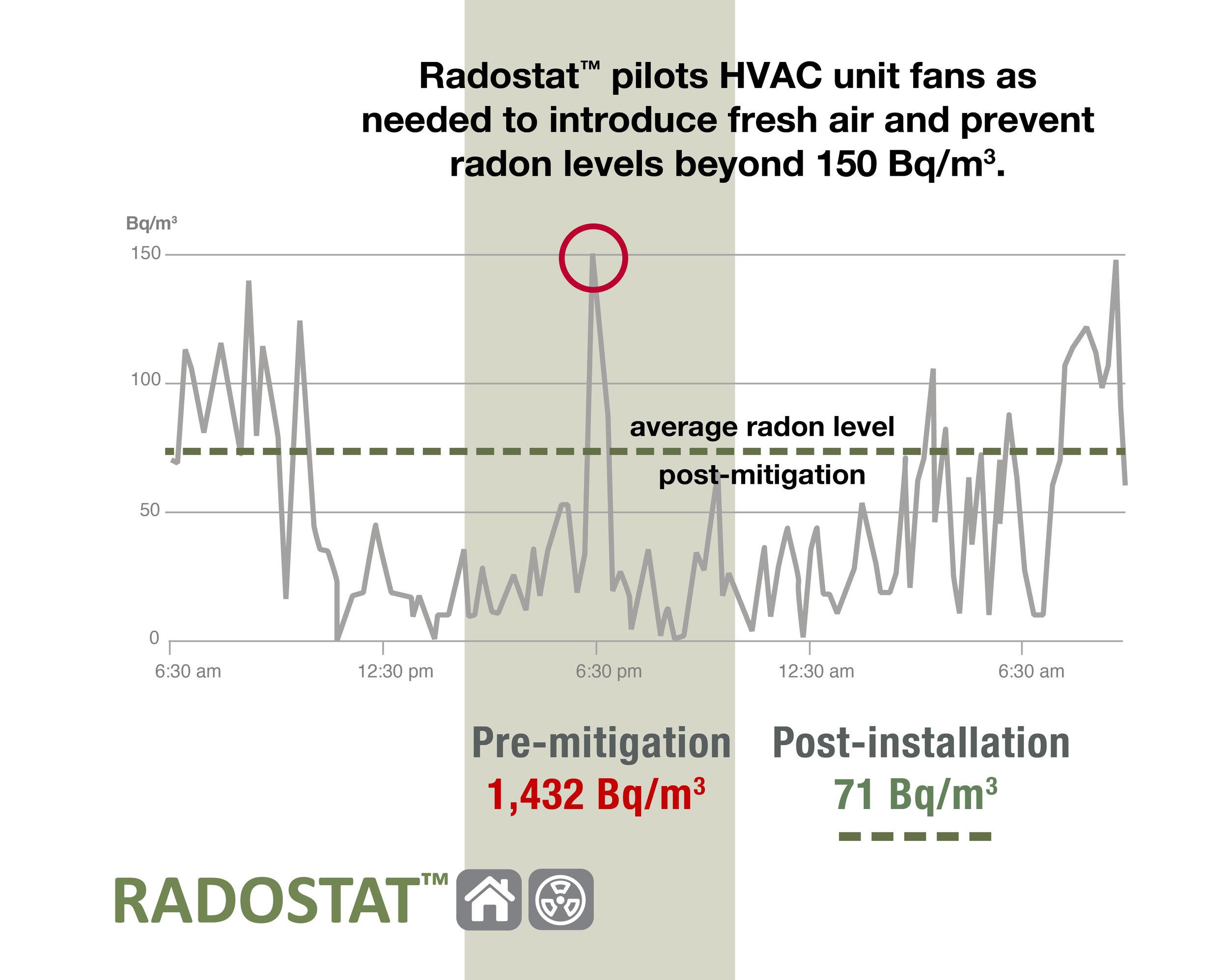RadostatCaseStudyPG_web.jpg