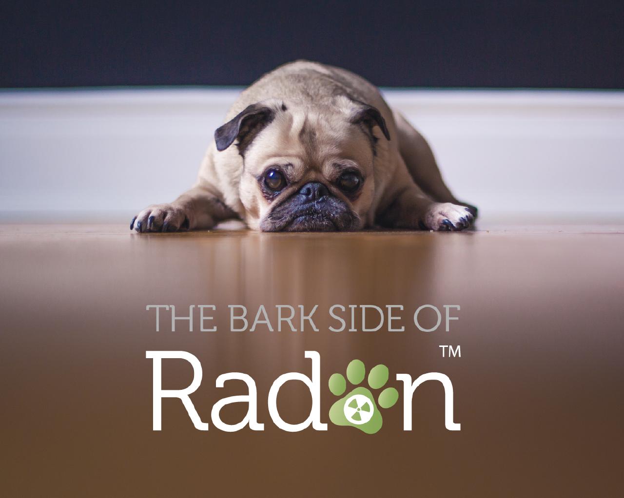 Bark-Side-of-Radon-campaign.png