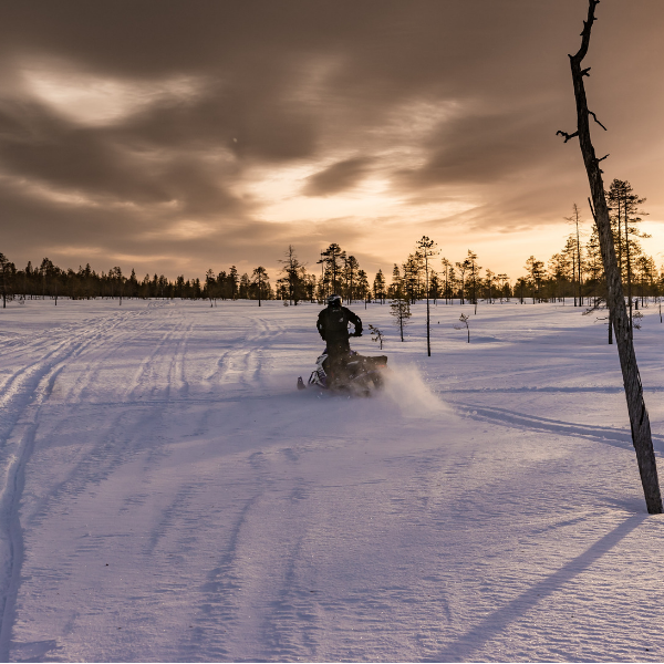 Things to do in Island Park | Snowmobiling
