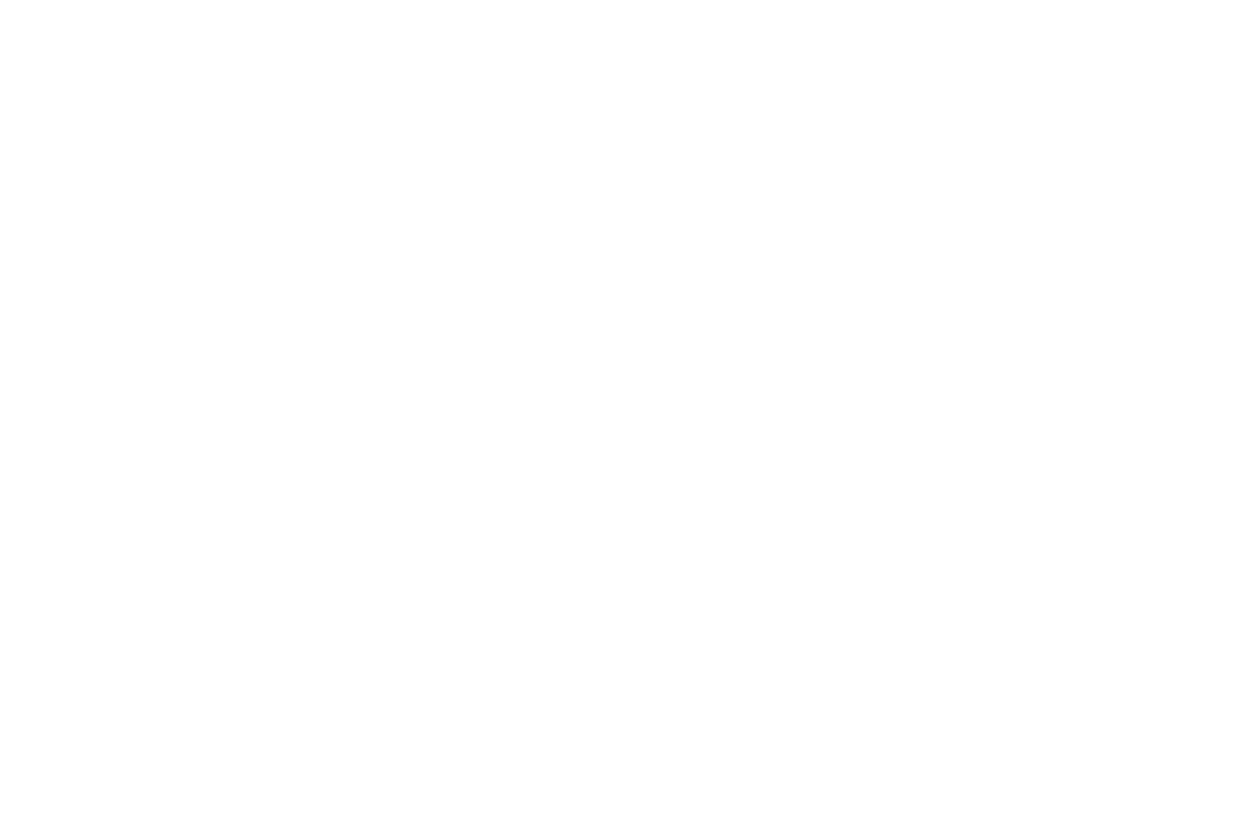 GOLD REMI WINNER - WorldFest-Houston International Film - 2019.png