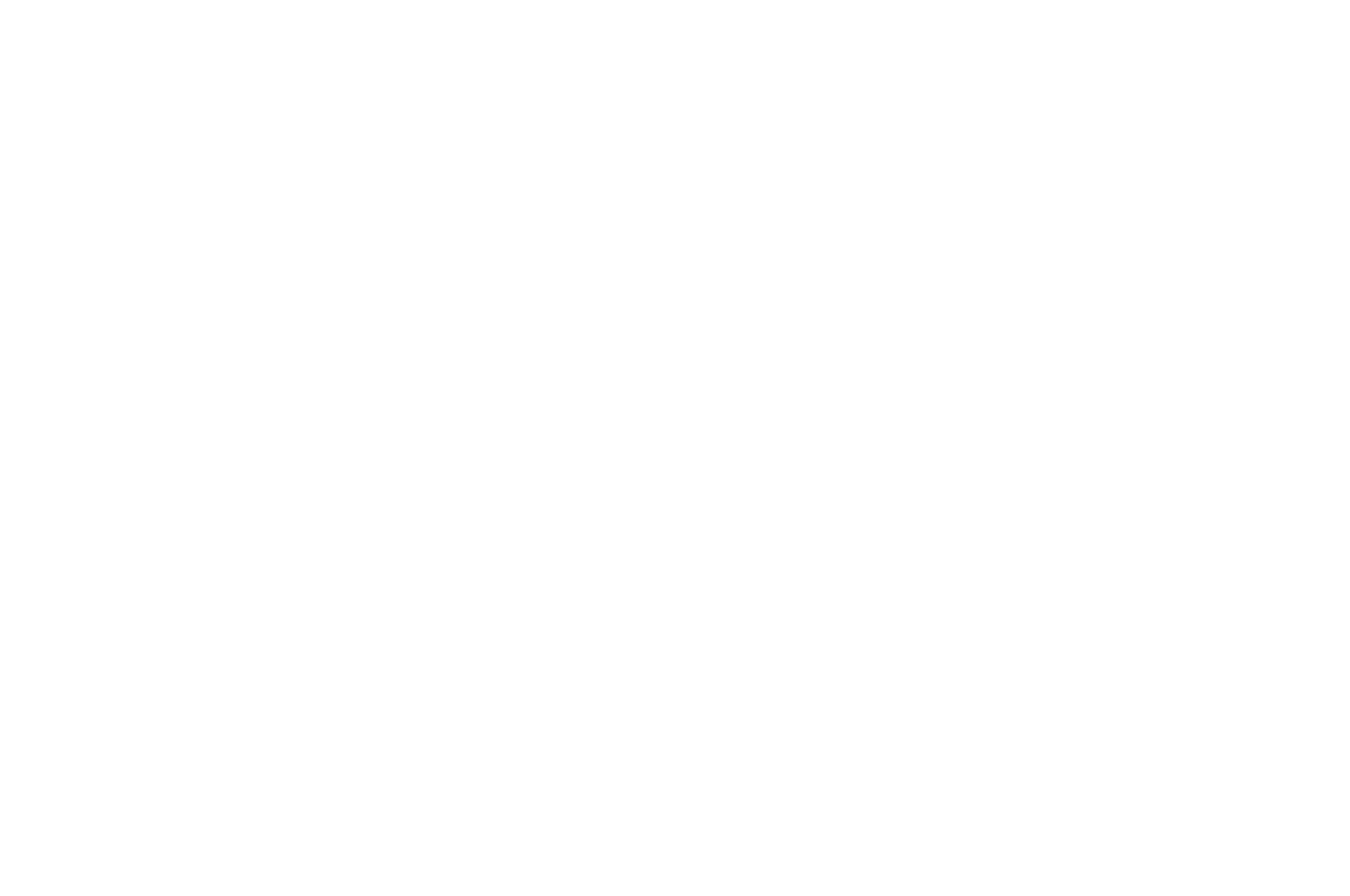 OFFICIAL SELECTION - LA Music Video Awards - 2019.png