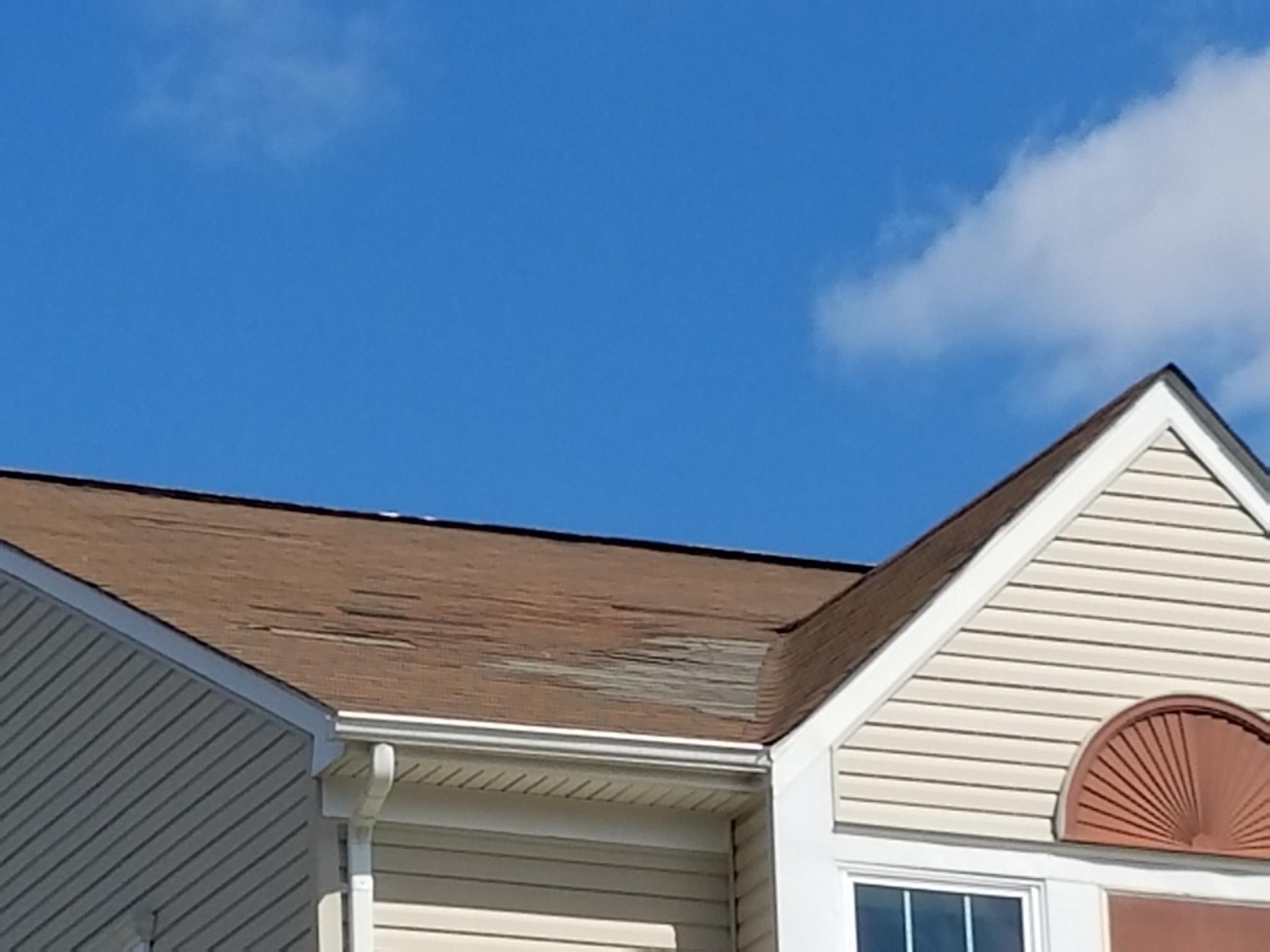 Wind Damaged Roof
