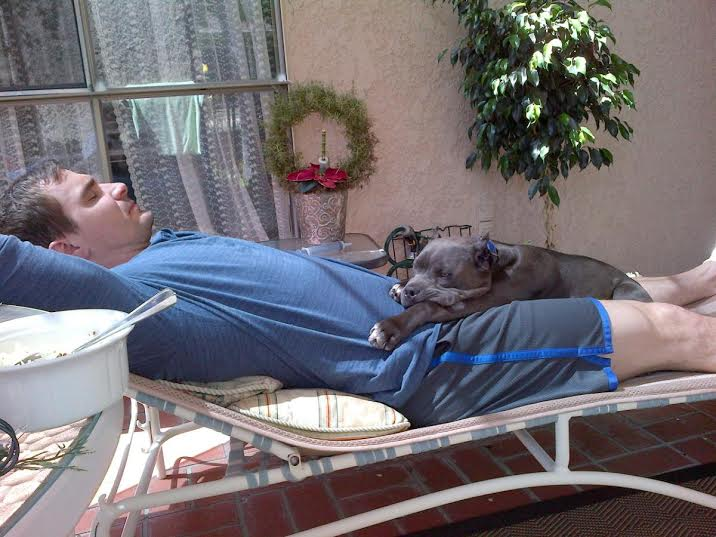 happy-dog-after-acupunture-and-alternative-medicine.jpg