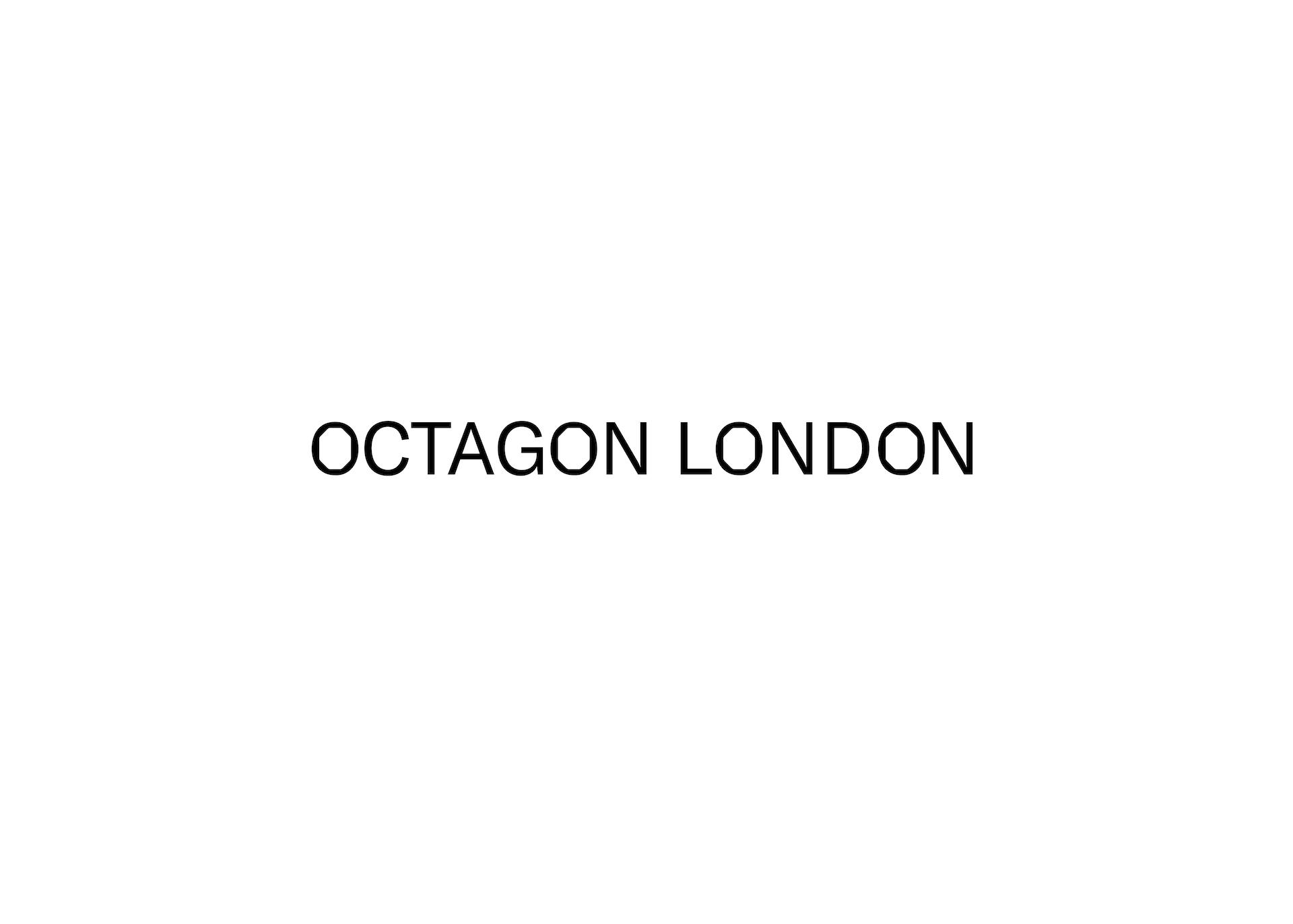 Octagon Brosure13.jpg