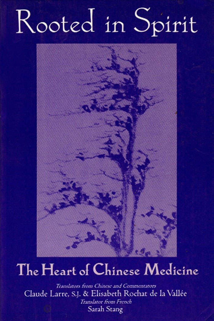 rooted in spirit book.jpg