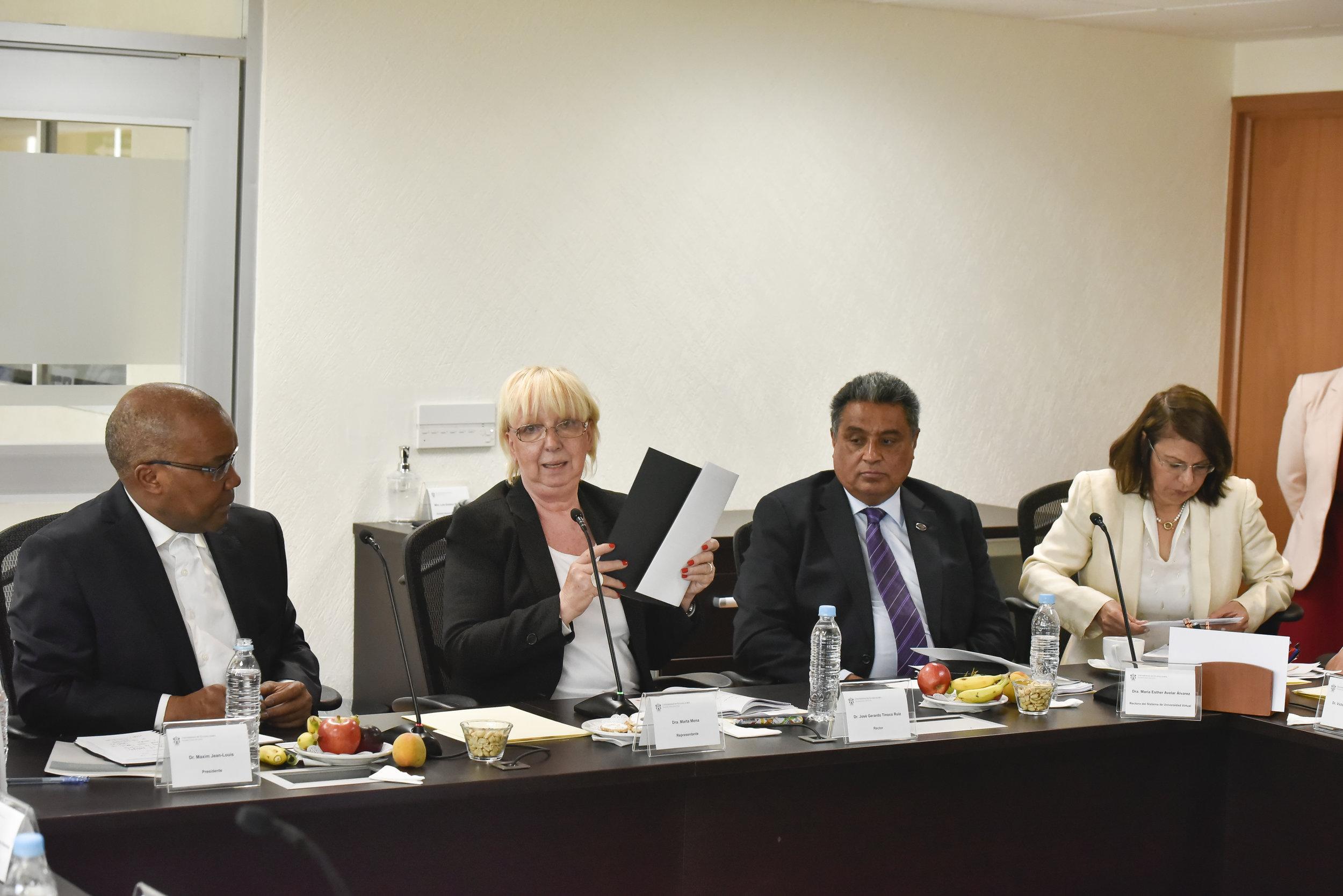 ICDE Representatives meet UDG Virtual