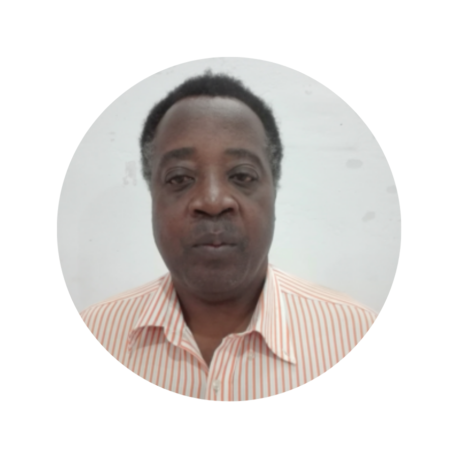 Tolly S. A. Mbwette ICDE EC Member.png