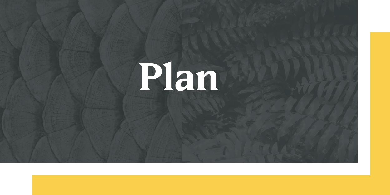 plan-01.png