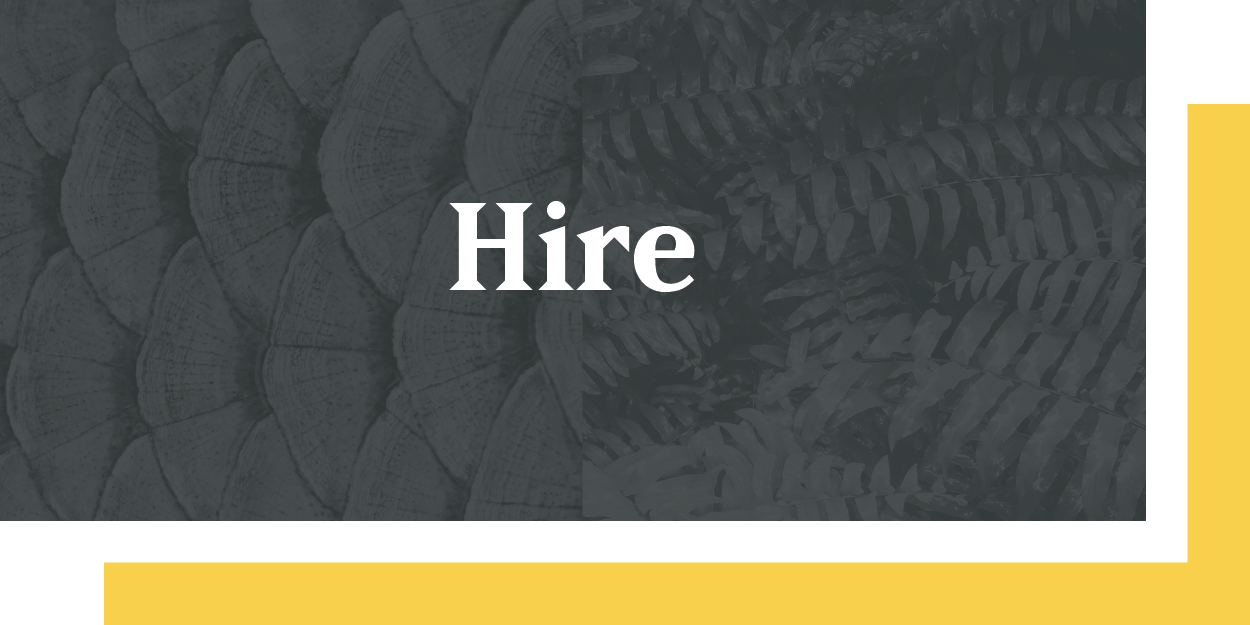 hire-01.png