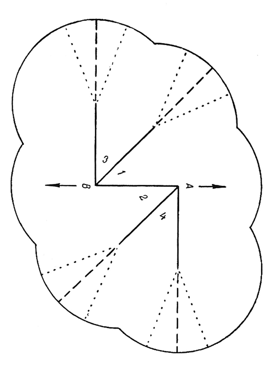 model5.jpg