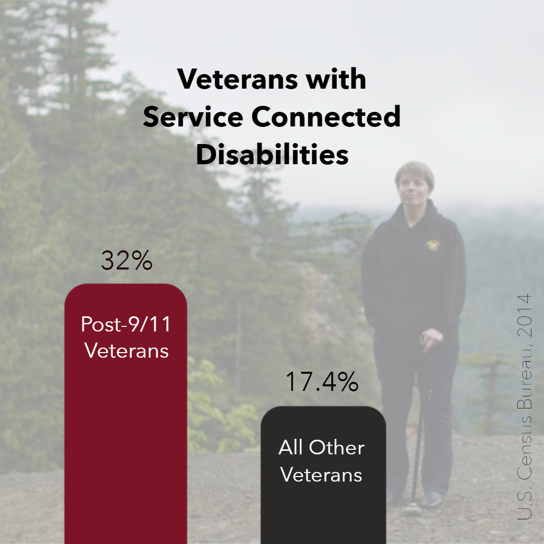 Veterans w Disabilities Transparent Graph.jpg