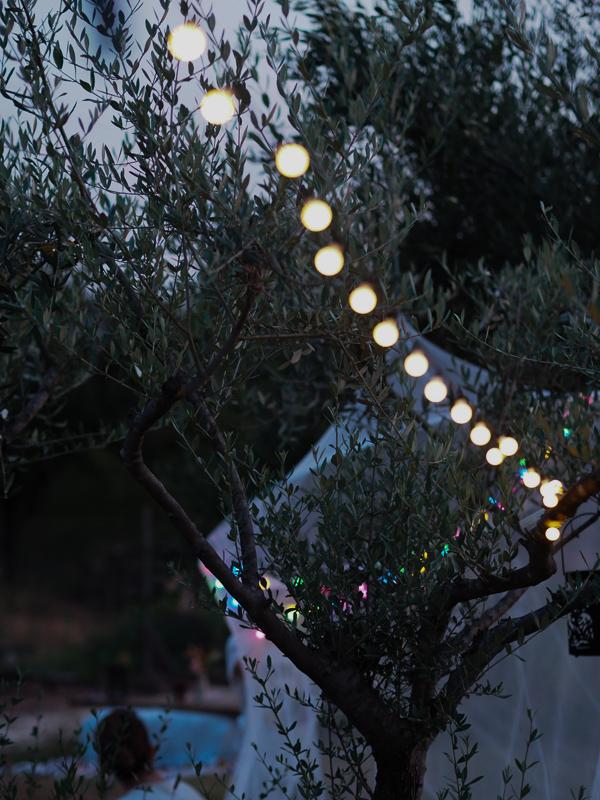 le-potager-des-roy-nuit-5-BD-14.jpg