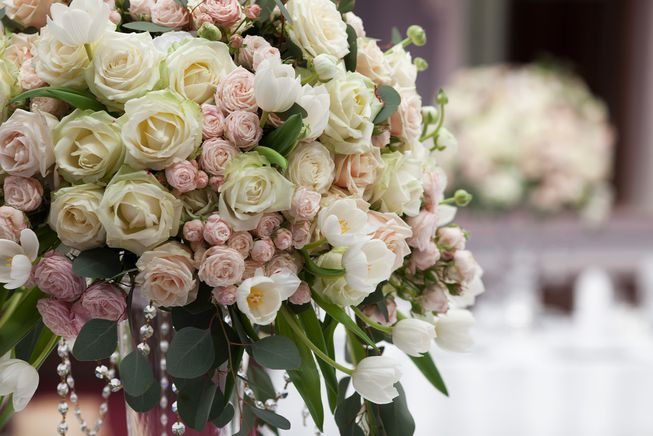 Let us help plan your big day!