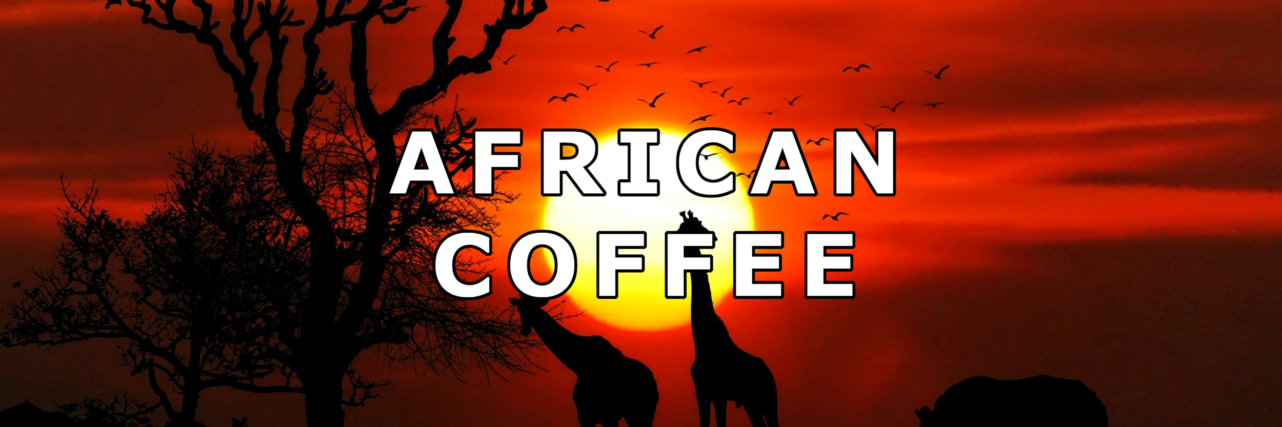 african_coffee2.png