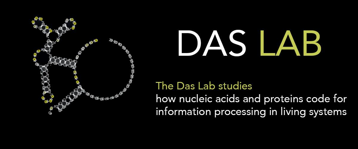 Das-Lab-Cover-big.jpg