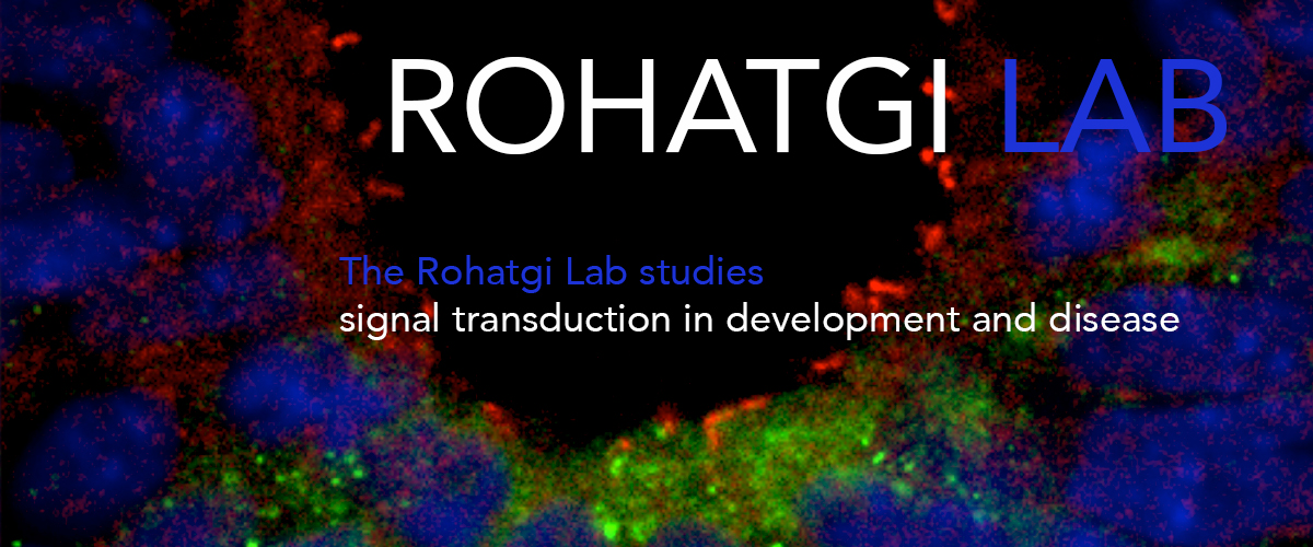 Rohatgi-Lab-Cover-big.jpg
