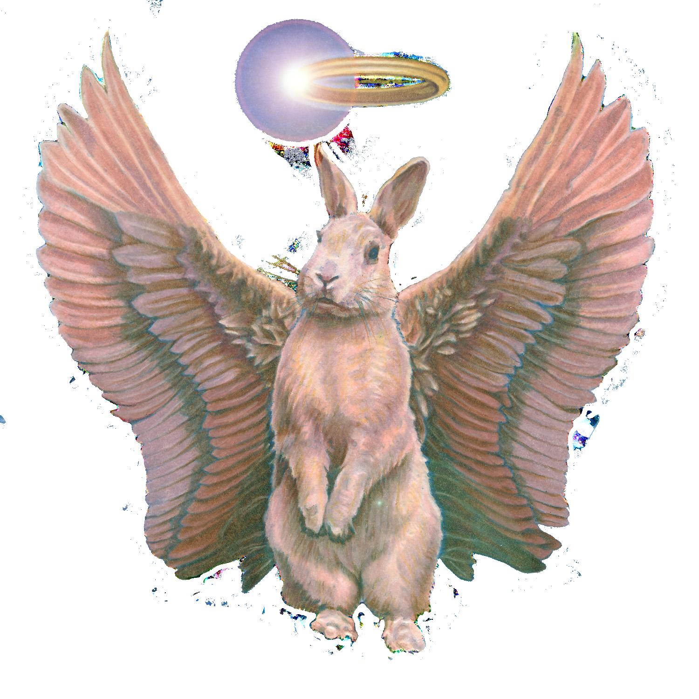 Dead Rabbits_72dpi_Ron Chironna Transparent.png
