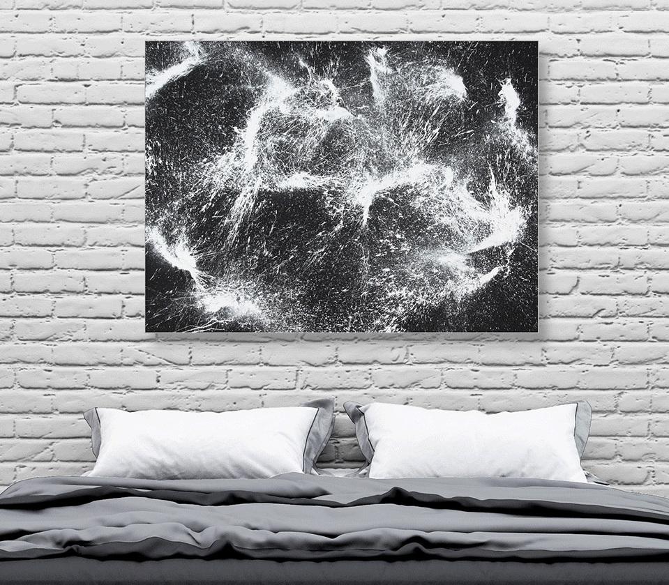 Cosmos-in-room_lo.jpg