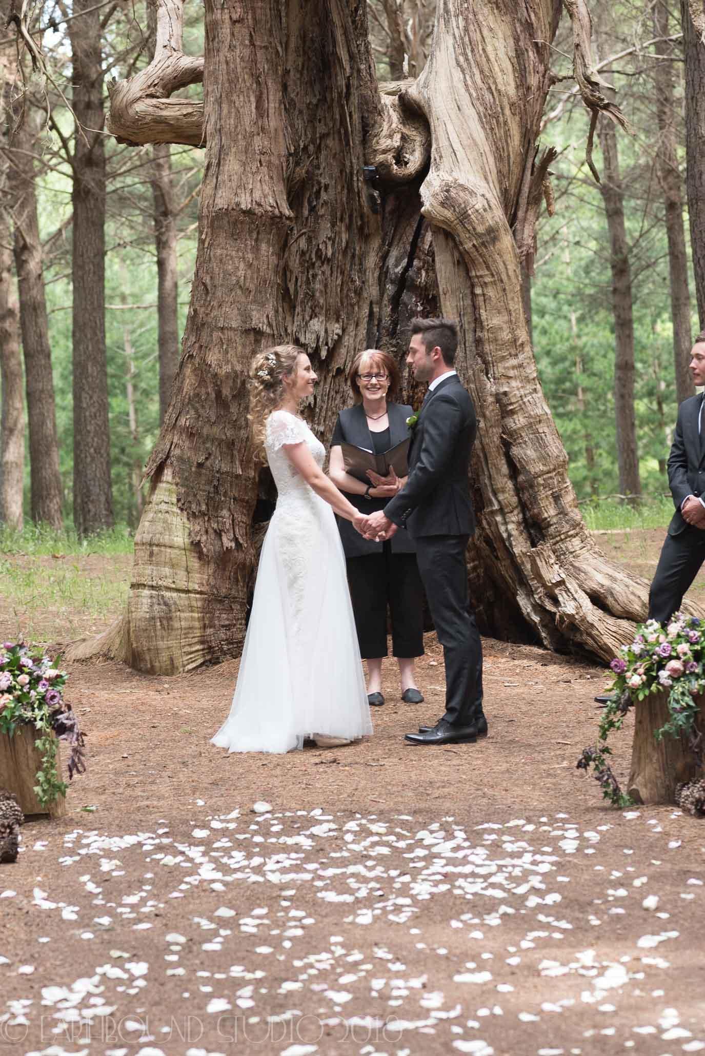 20161121-154238Joel&Bella_Wedding.jpg