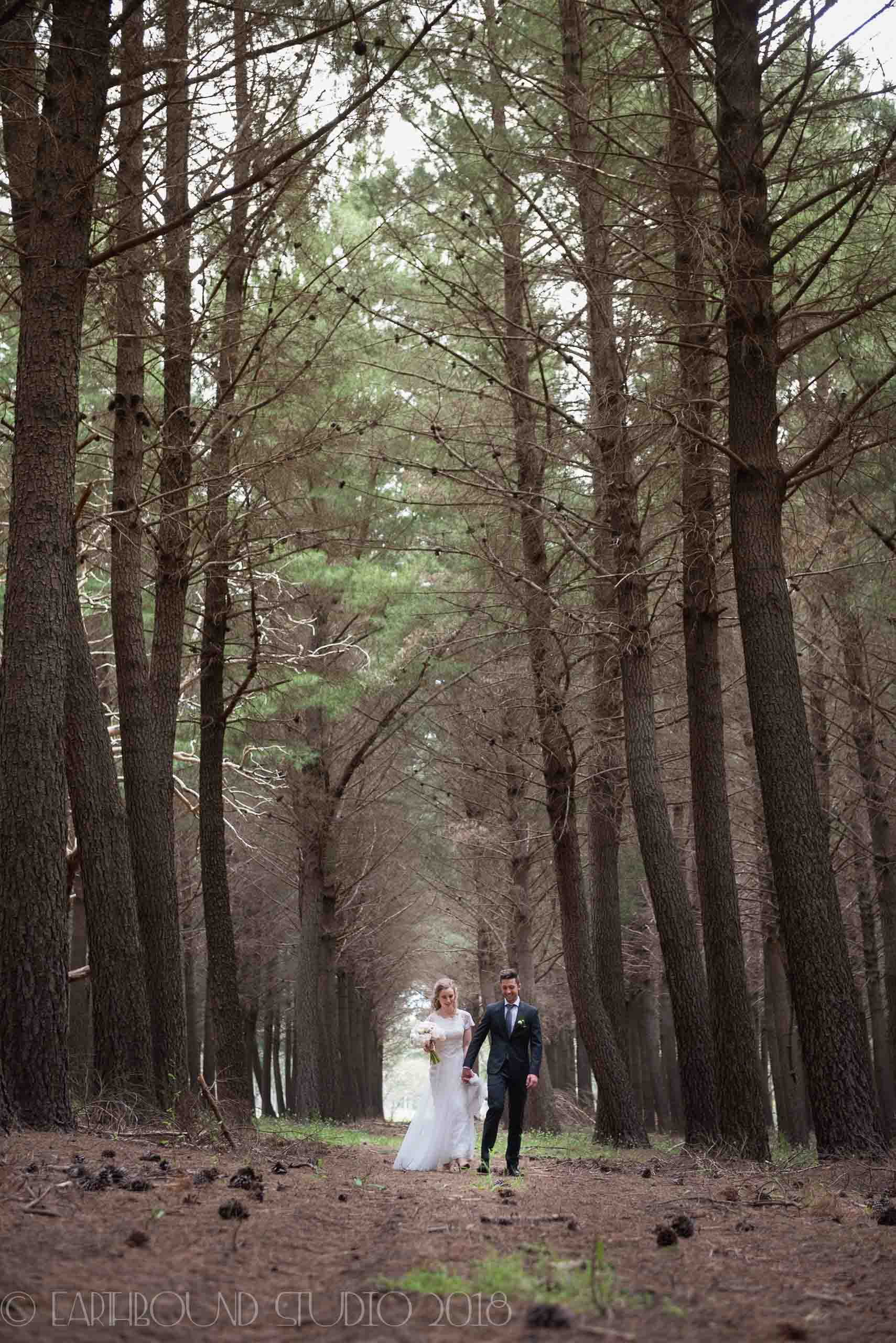 20161121-171541Joel&Bella_Wedding.jpg