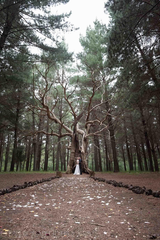 20161121-171955Joel&Bella_Wedding.jpg