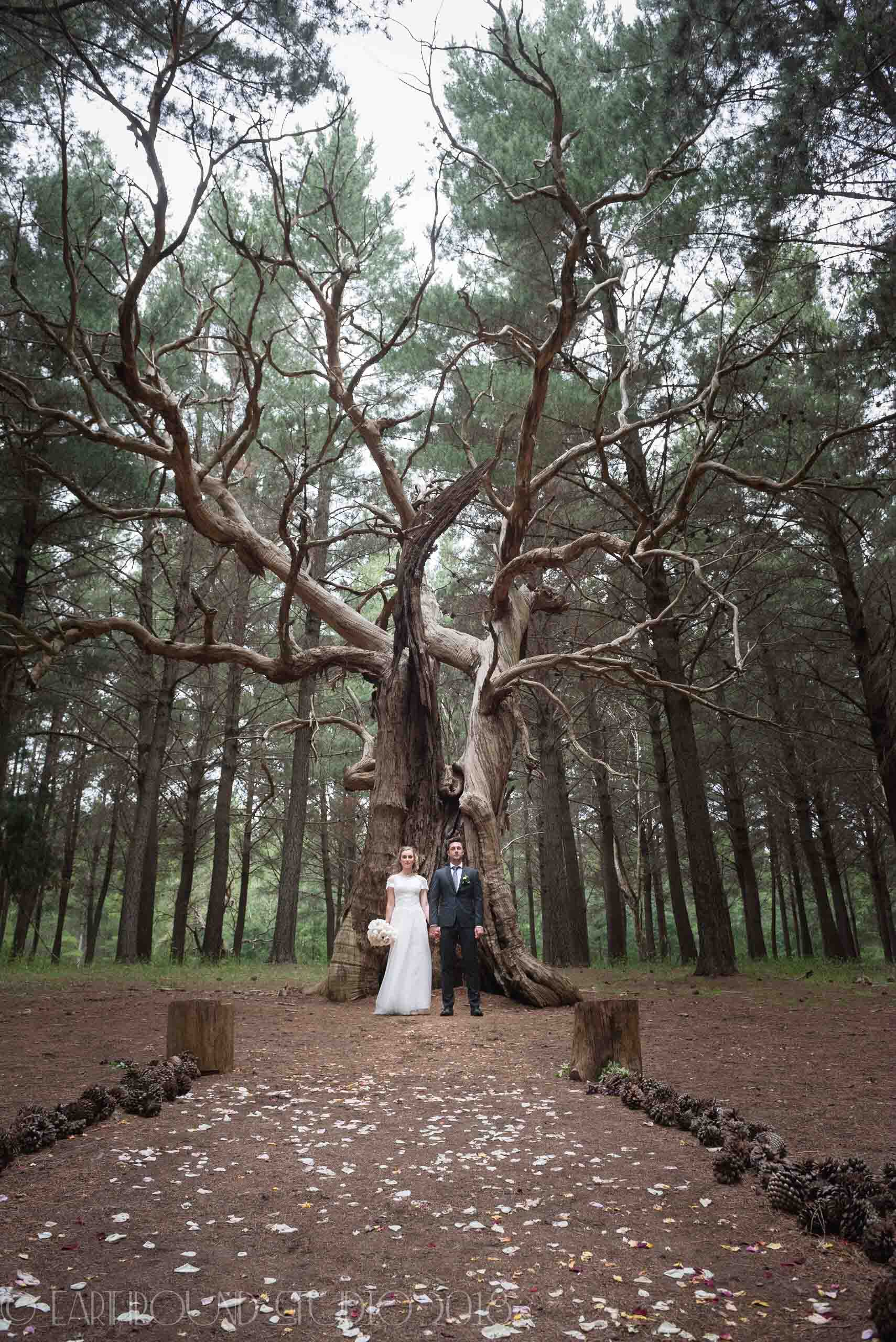 20161121-171900Joel&Bella_Wedding.jpg