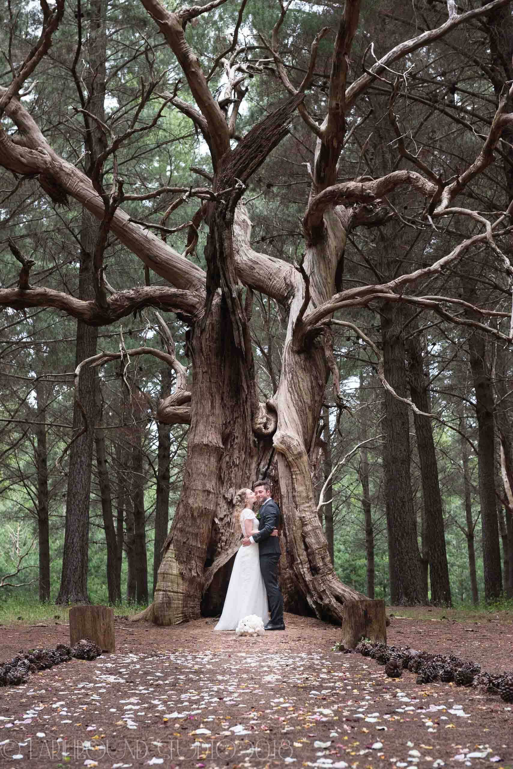 20161121-171959Joel&Bella_Wedding.jpg