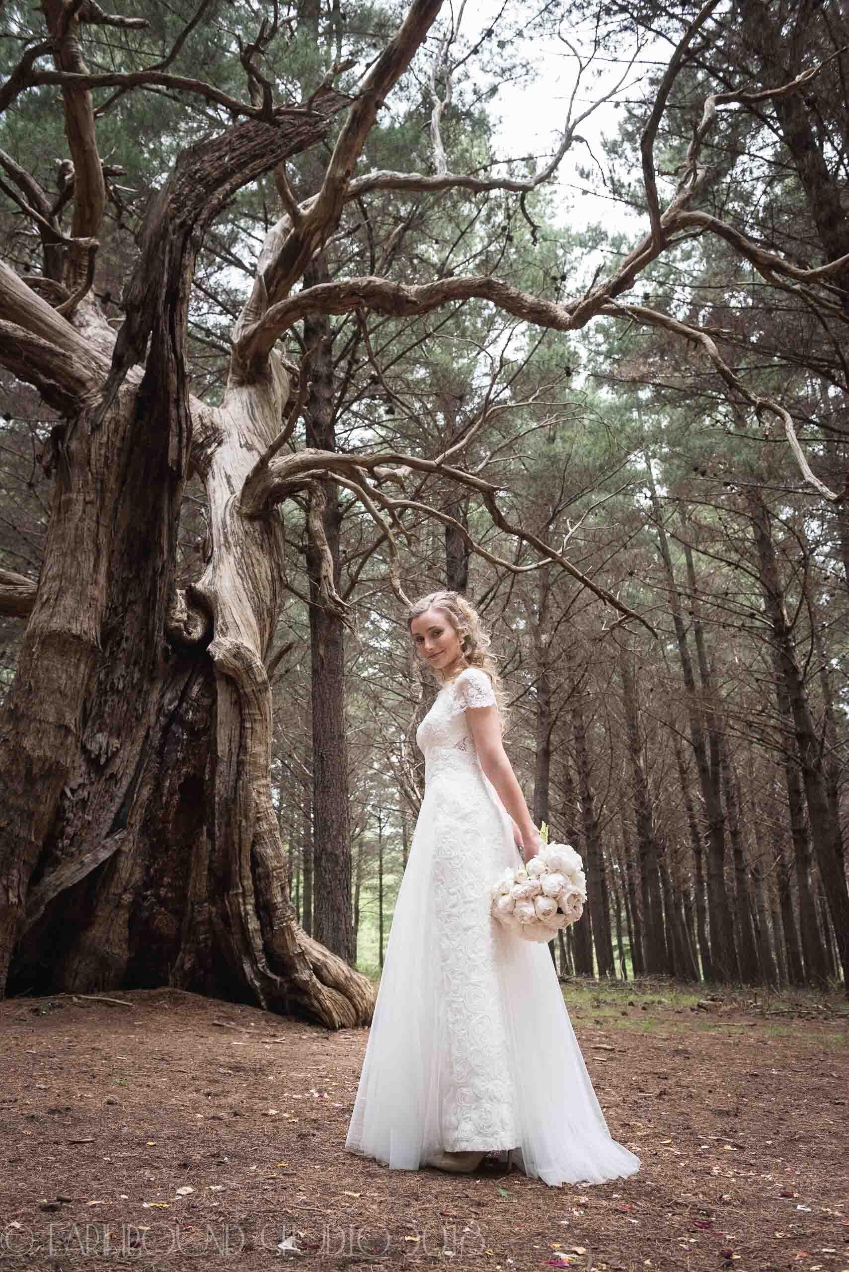20161121-172757Joel&Bella_Wedding.jpg