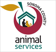 animal-services219.jpg