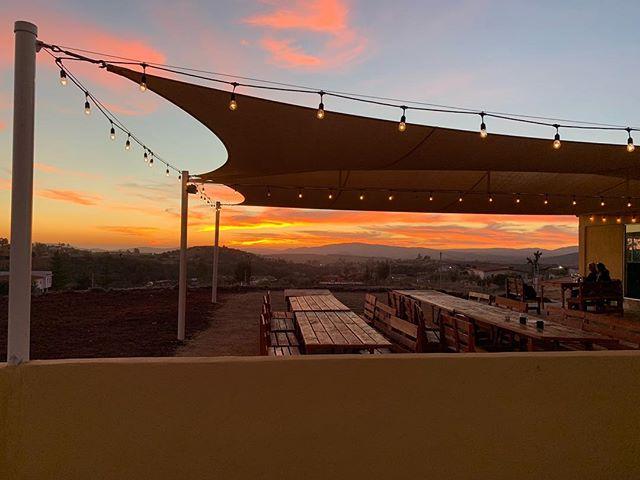 @carneyvino.mx les desea una Feliz Navidad y prospero Año Nuevo. Estaremos abiertos con nuestro horario habitual durante todo el invierno. Te esperamos. . . . . . #CarneyVino #valledeguadalupe #parrillaargentina #cavamaciel #travel #mexico #wanderlust #ensenada #valledeguadalupe #bajawine #wine #travelgram #instatravel #vino #winecountry #winetasting #bajacalifornia #food #foodie ##instafood #vscofood #eatingfortheinsta