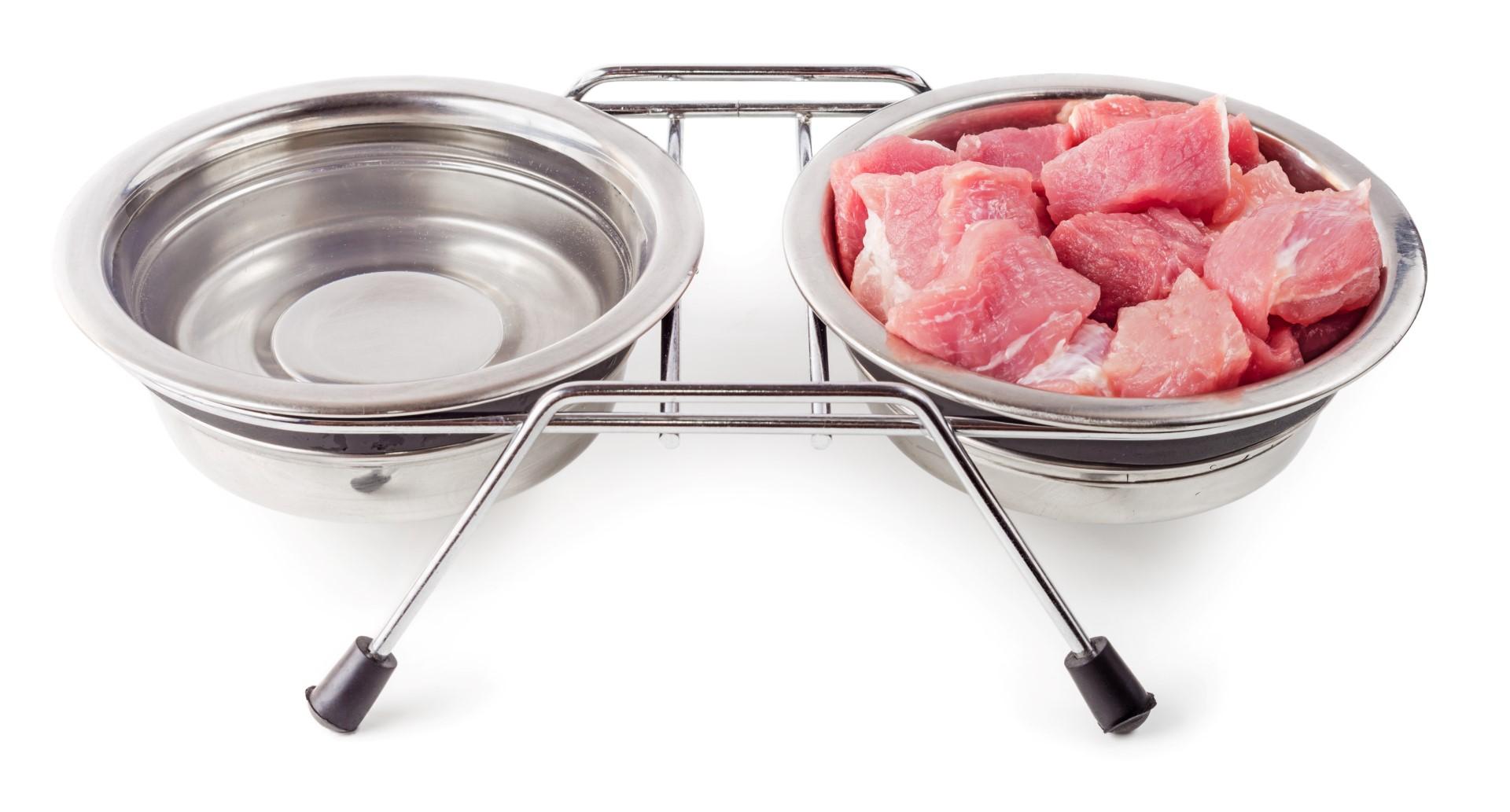 Raw-Meat-Cat-Food.jpg