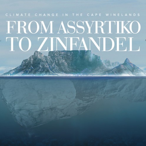 CLIMATE CHANGE IN THE CAPE WINELANDS | FROM ASSYRTIKO TO ZINFANDEL
