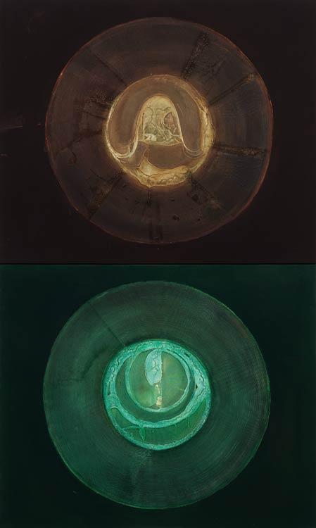 Radici circolari, 2002 Oil on canvas, 200 x 120 cm