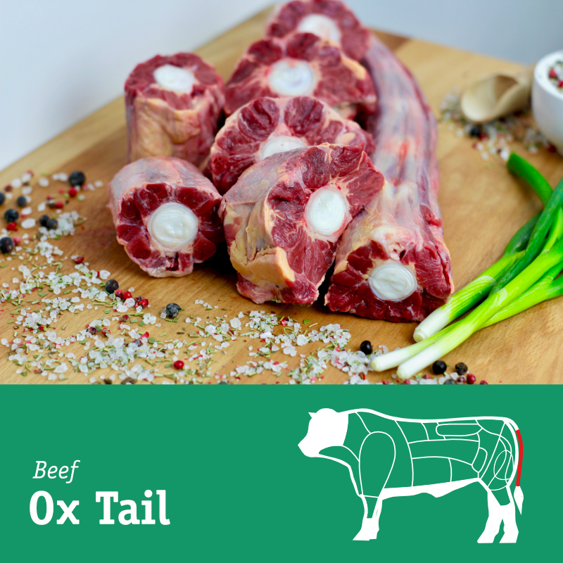 Ox Tail.png