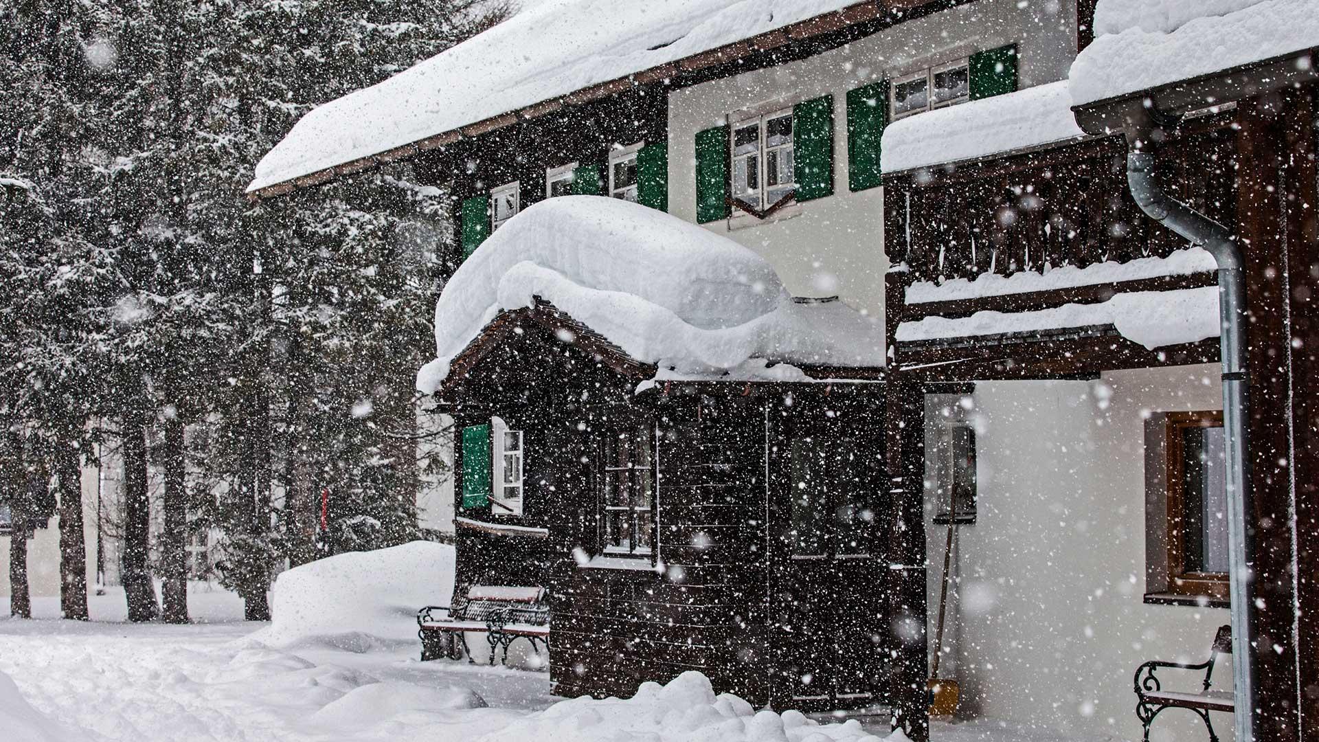 snowing-(1-of-1).jpg