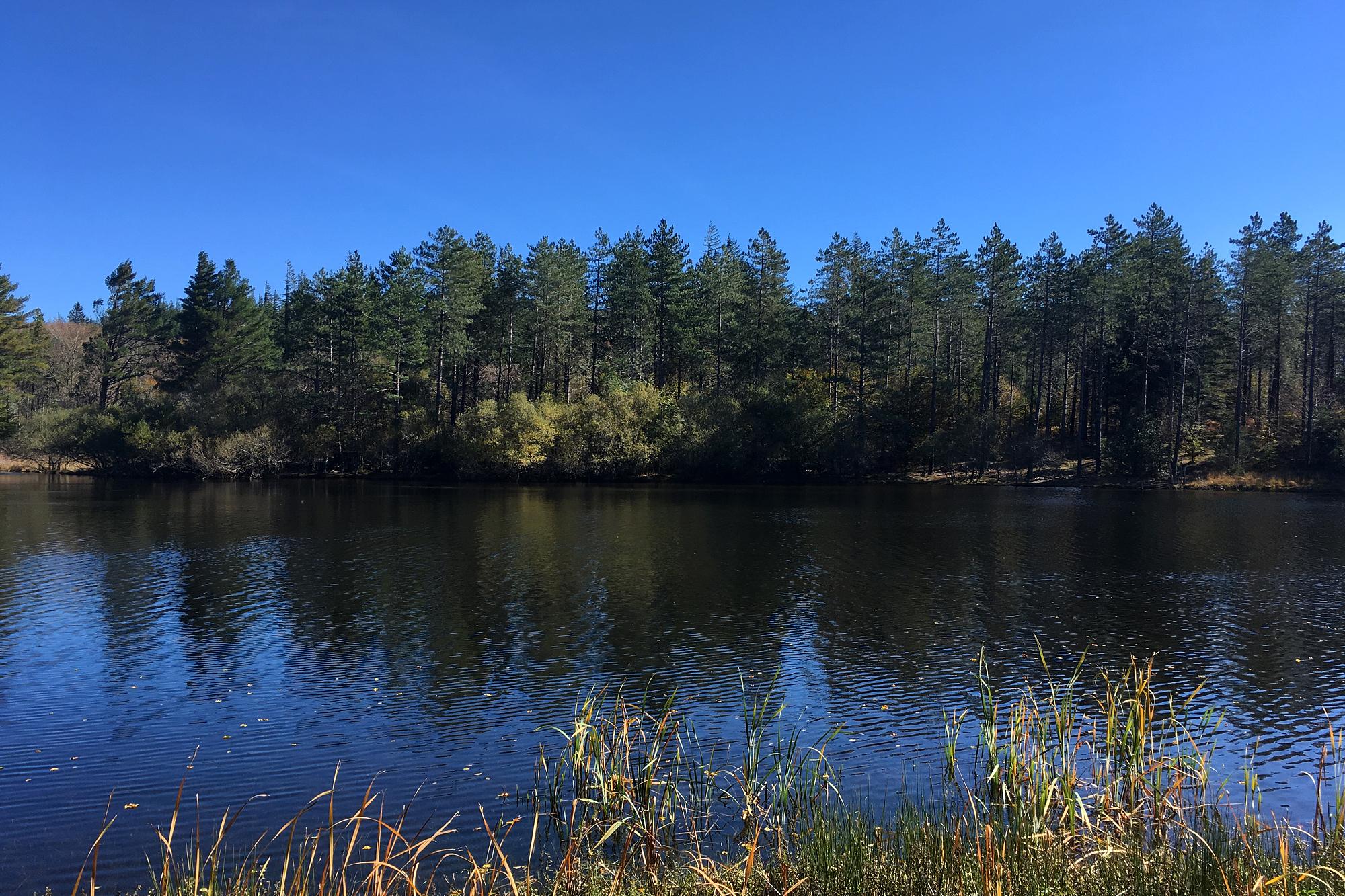 Lac_Fraysse.jpg