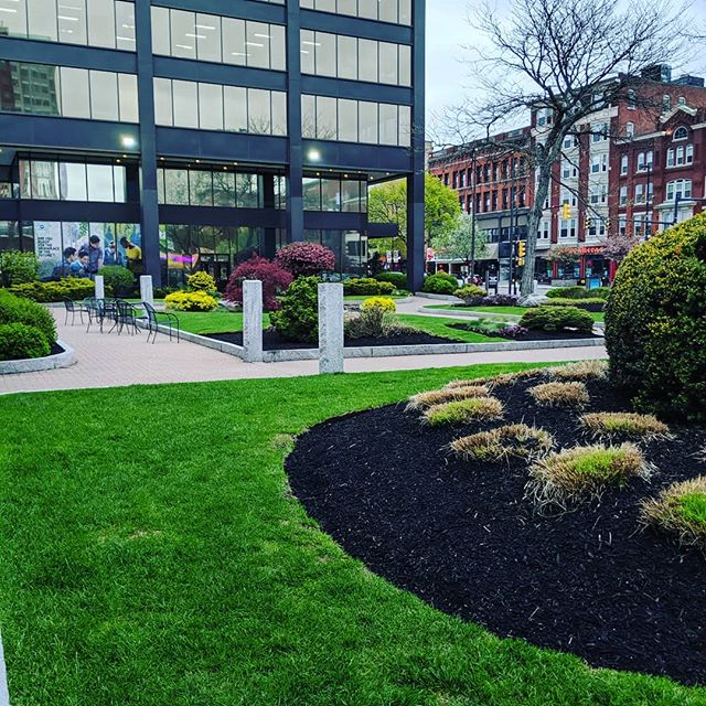 Hey Downtown Manchester! Happy Fri-Yay! Come hang out with us Downtown when the rain clears up!  #PocketParks #Parks #Plaza #Downtown #MHT #Manchester #ManchVegas #LuvMHT #VisitNH #VisitManchester