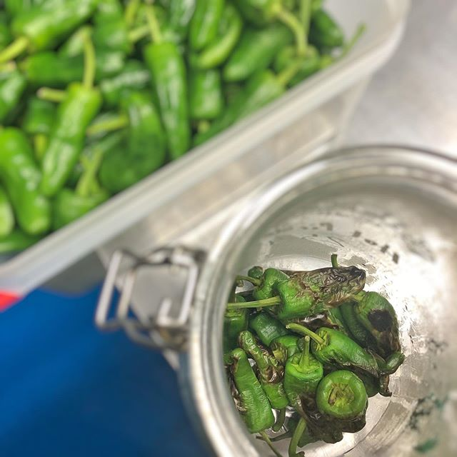 Hot pickled charcoal roast Padron peppers. We love these and they can be found in some of our 'Petiscos' dishes. Petiscos is the Portuguese answer to Tapas. Smaller tasting plates enabling up to have a lighter meal, taste more or share.  #petiscos #padronpeppers #embrkitchen #charcoalroast #pickled #pickledpadron #tastingdishes #sharingdishes #healthyliving